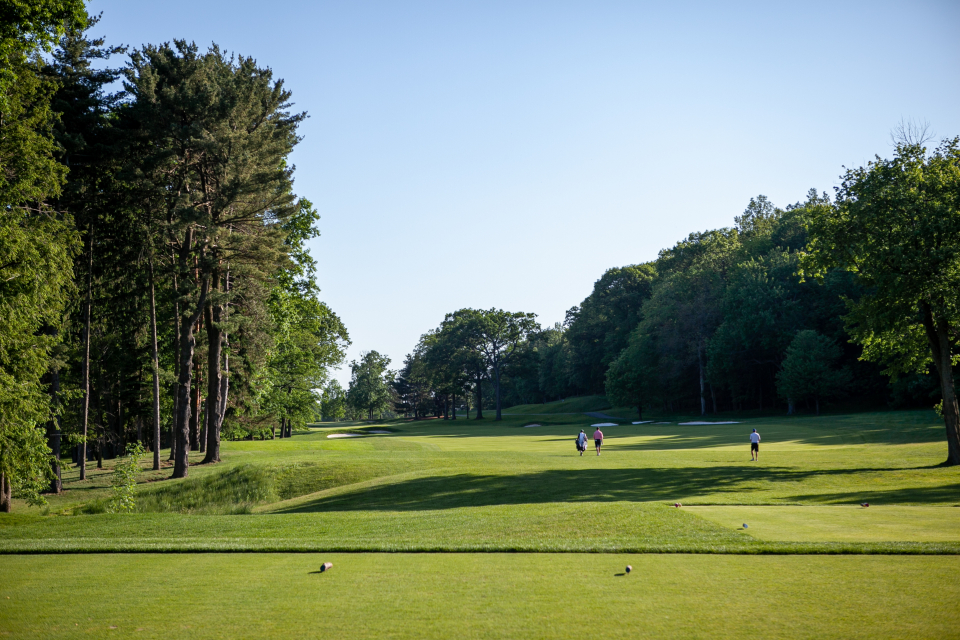 Free stock photo of golf course