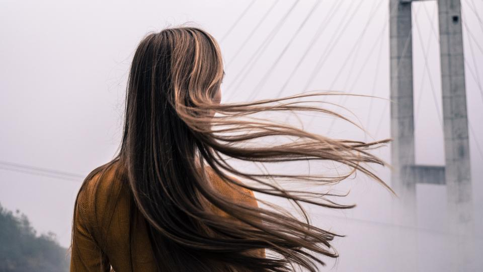 Free stock photo of hair people