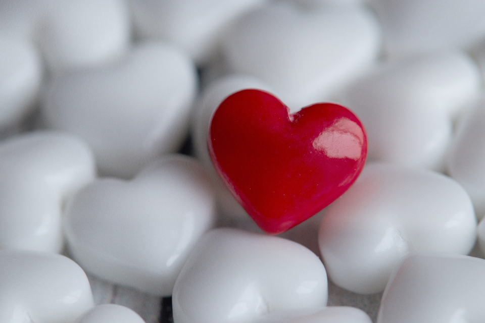 Free stock photo of heart candy