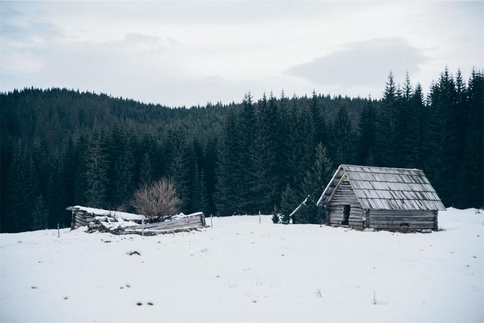 hut shed winter
