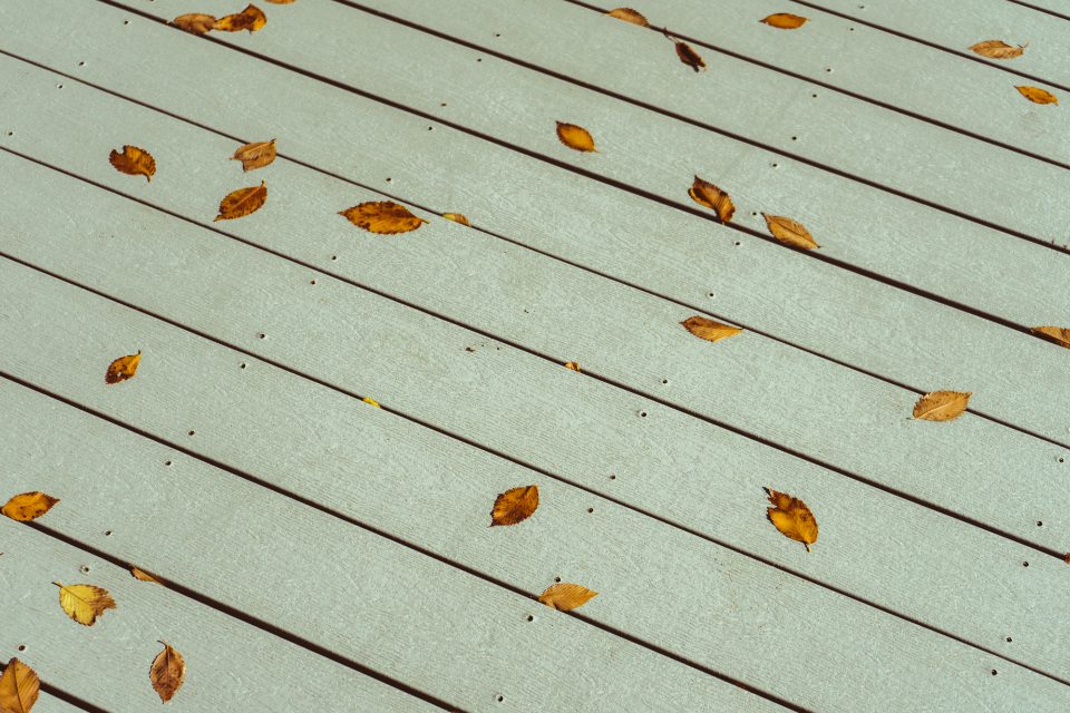 Free stock photo of leaf deck