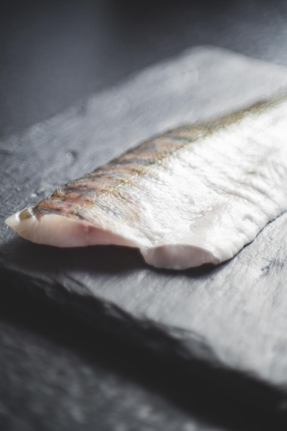 Free stock photo of meat fish