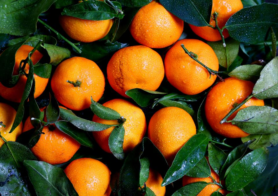 oranges fruits citrus