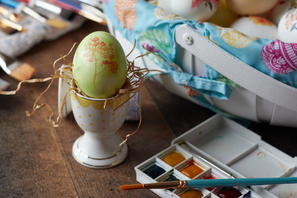 Free stock photo of painted egg