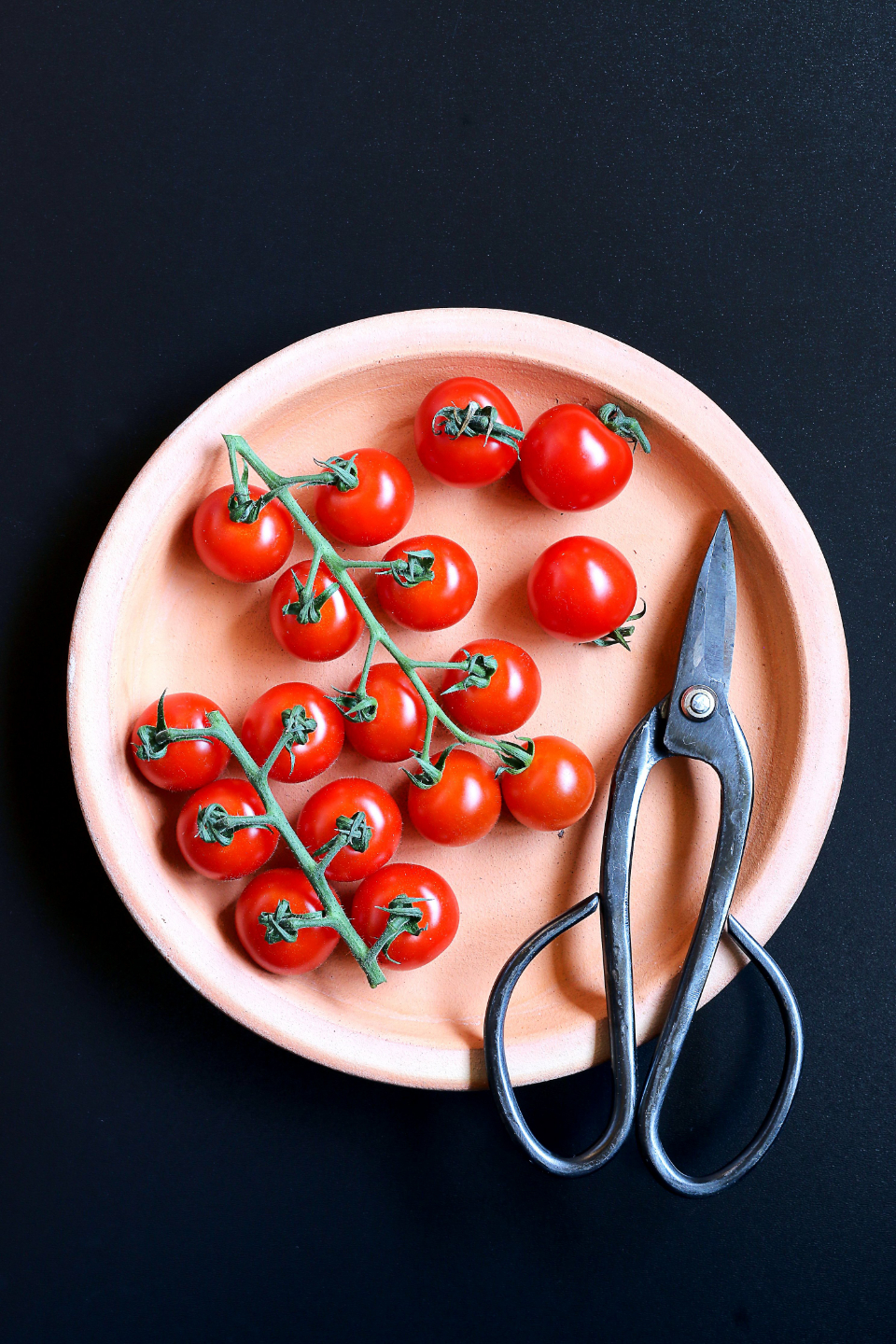 plate flat lay tomatoes