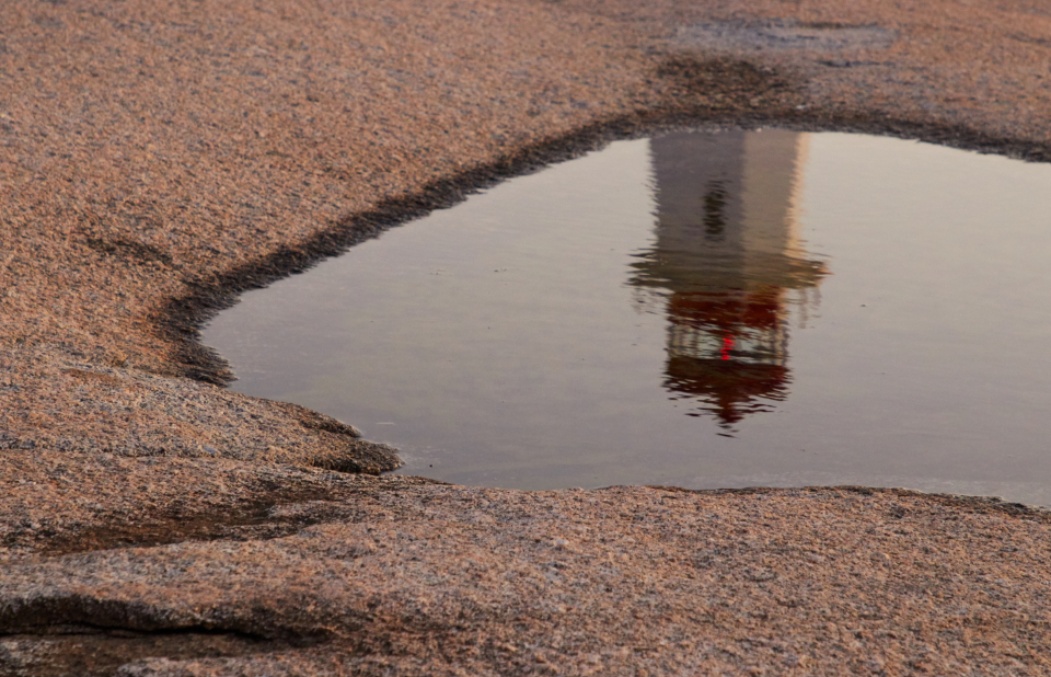 puddle water reflection