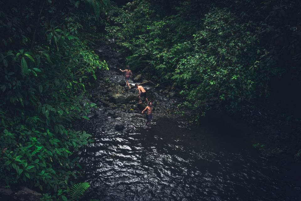 Free stock photo of river water