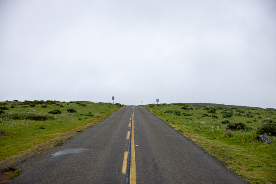 Free stock photo of rural road