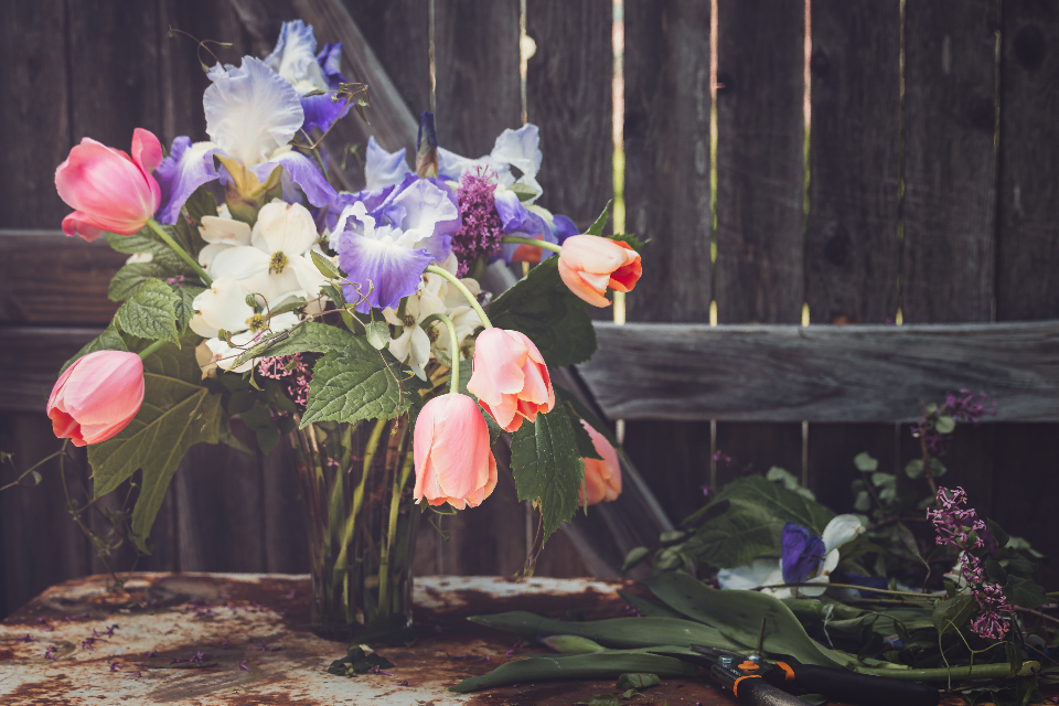 Free stock photo of rustic floral