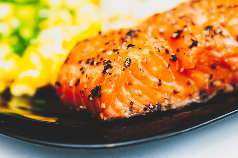 Free stock photo of salmon fish
