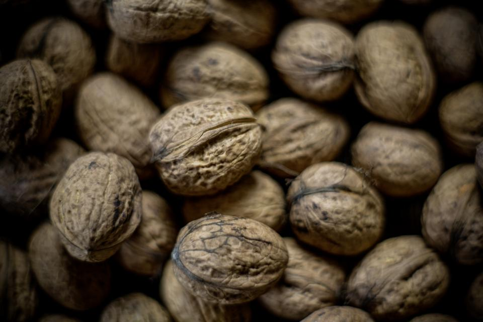 seeds walnut food