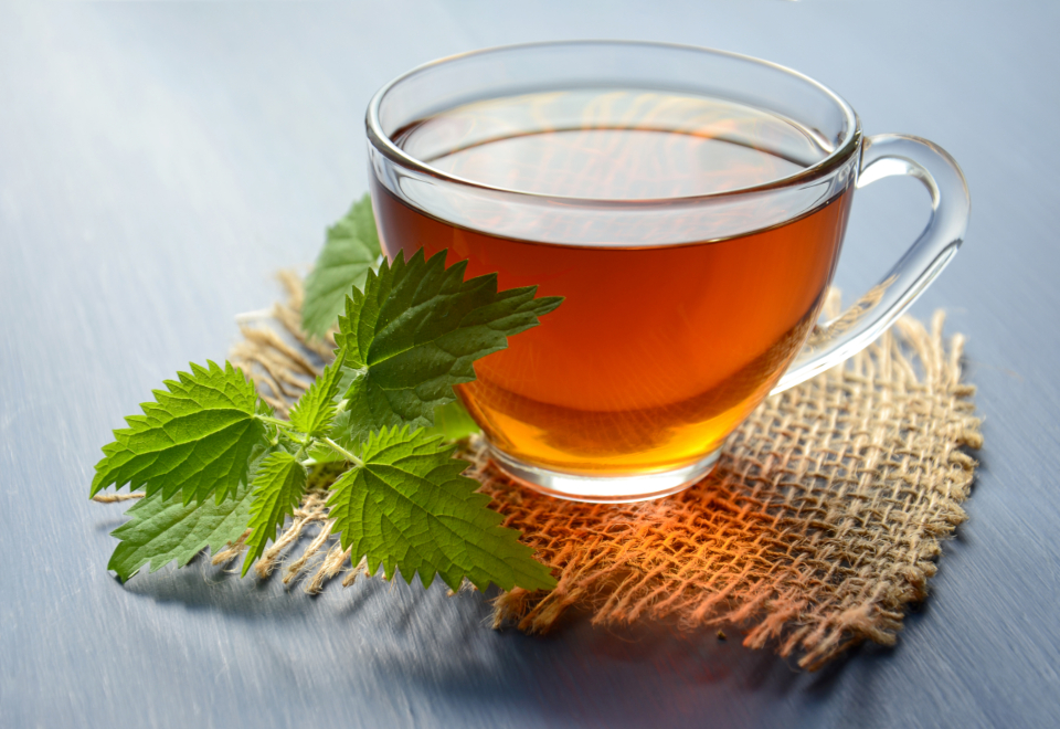 tea herbal tea nettle