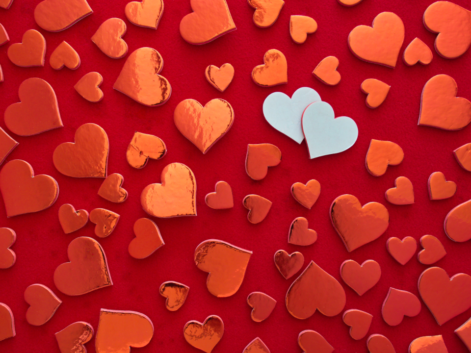 Free stock photo of valentines day