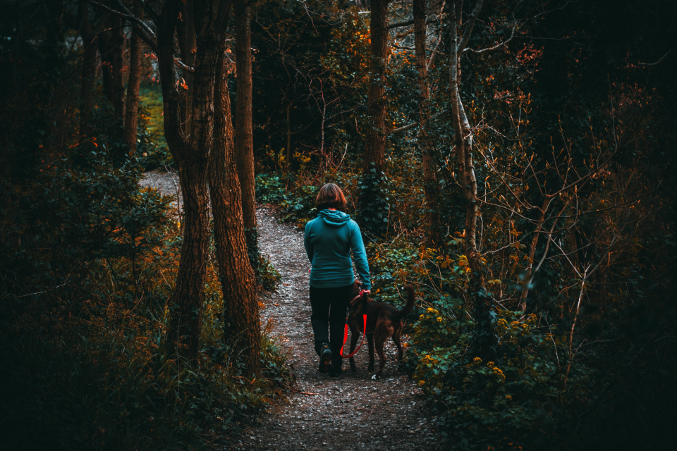 woman hike forest